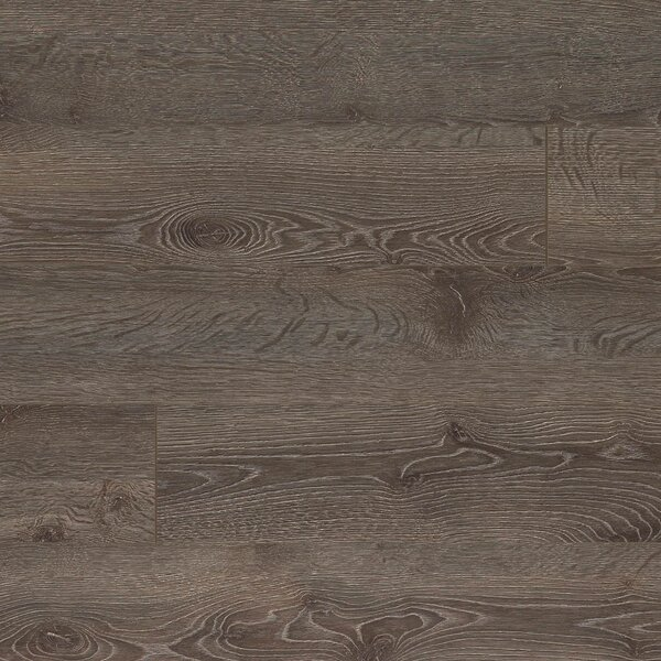 Elevae 6.13 x 54.34 x 12mm Oak Laminate Flooring in Mineral Oak by Quick-Step