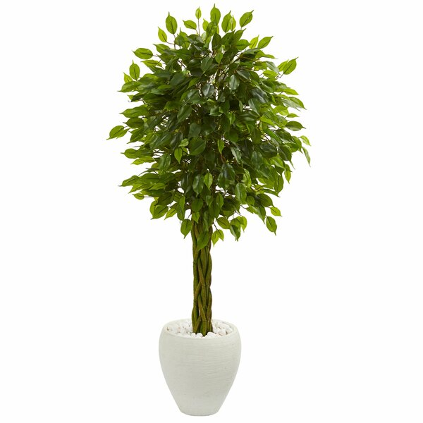 Braided Artificial Floor Ficus Tree in Planter by Bungalow Rose
