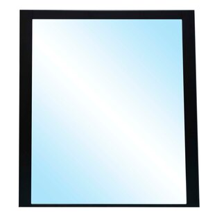 Emory Accent Mirror by Latitude Run