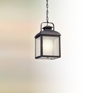 Inexpensive Koffi 1-Light Outdoor Pendant By Gracie Oaks