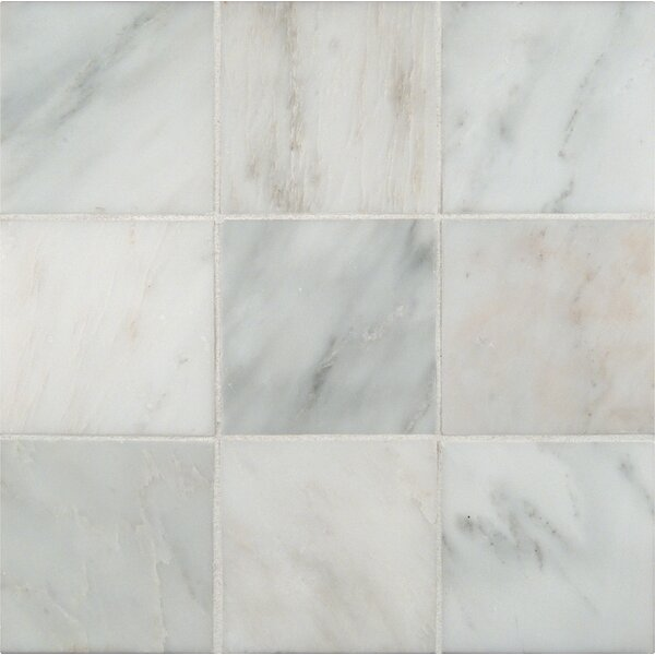 4'' x 4'' Marble Field Tile in Arabescato Carrara by MSI