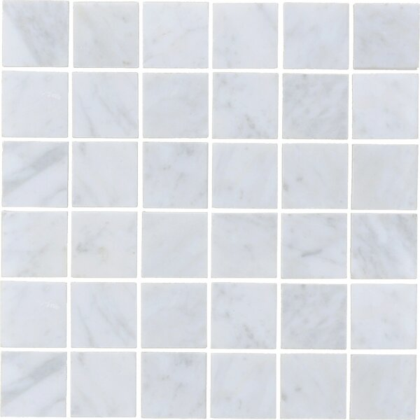 Carrara 2 x 2 Honed Marble Subway Tile in White by The Bella Collection