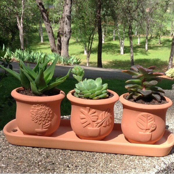 Proulx 4-Piece Terracotta Pot Planter Set by August Grove