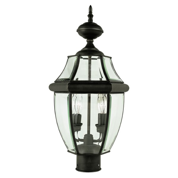 Thiel 2-Light Lantern Head by Darby Home Co