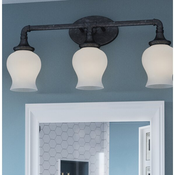 Oakham 3-Light Vanity Light by Williston Forge