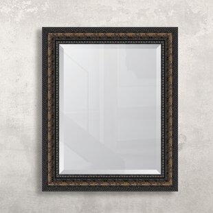 Melissa Van Hise Bronze Rope Resin Frame Wall Mirror