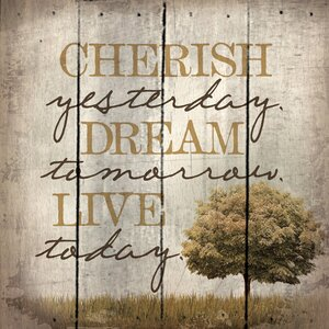 'Cherish Yesterday. Dream Tomorrow. Live Today.' by Tonya Gunn Textual Art on Plaque by Artistic Reflections