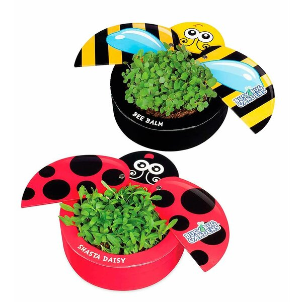 Busy Bugs 2-Piece Pot Planter Set by HearthSong