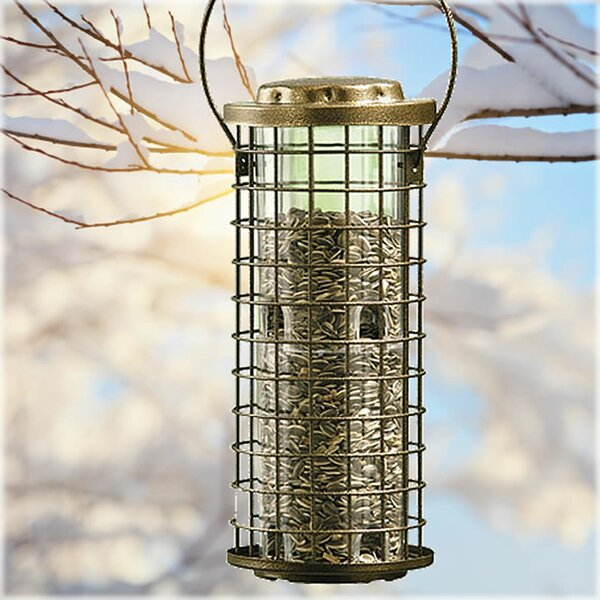 Squirrel Stumper Caged Tube Bird Feeder by Perky P