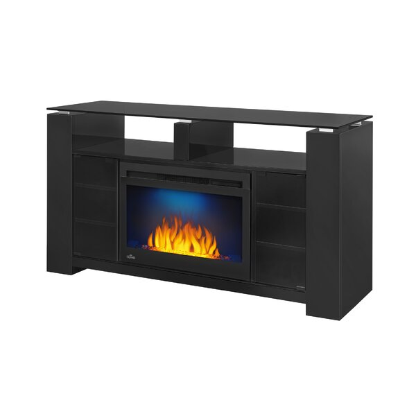 Foley 27 TV Stand with Fireplace by Napoleon