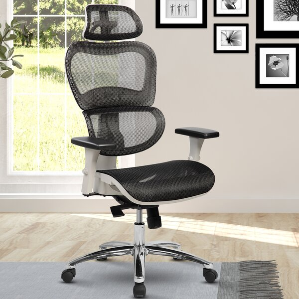 Eure Deluxe Mesh High-Back Desk Chair with Neck Support by Latitude Run