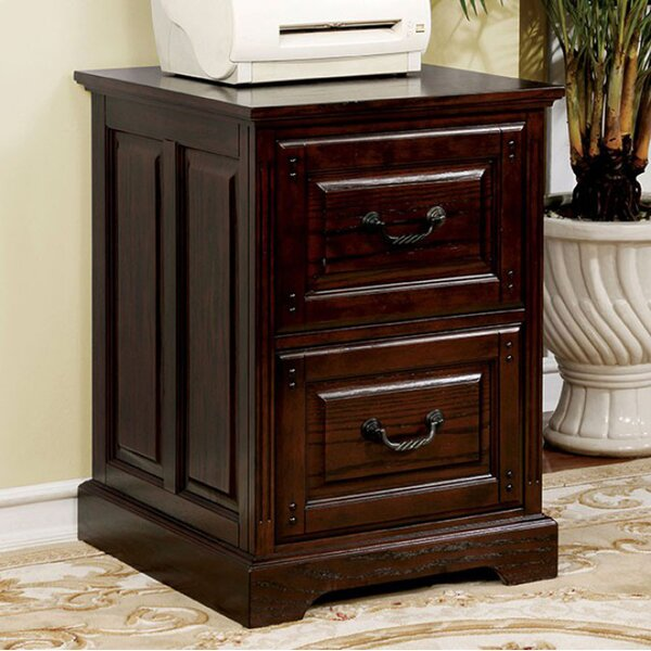 Baldemar 2 Drawer Vertical File by Darby Home Co