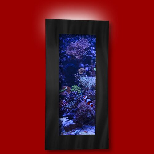 Aussie 5 Gallon Wall Mounted Aquarium Tank by Vandue Corporation