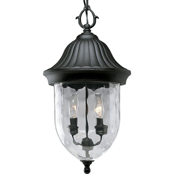 Triplehorn 2-Light Hanging Lantern by Alcott Hill