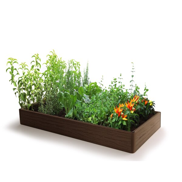 2 ft x 4 ft Composite Wood Raised Garden by D.F. Omer