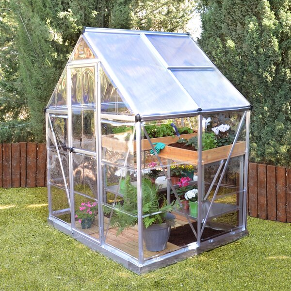 Shearson 6 Ft. W x 4.5 Ft. D Greenhouse by Darby Home Co