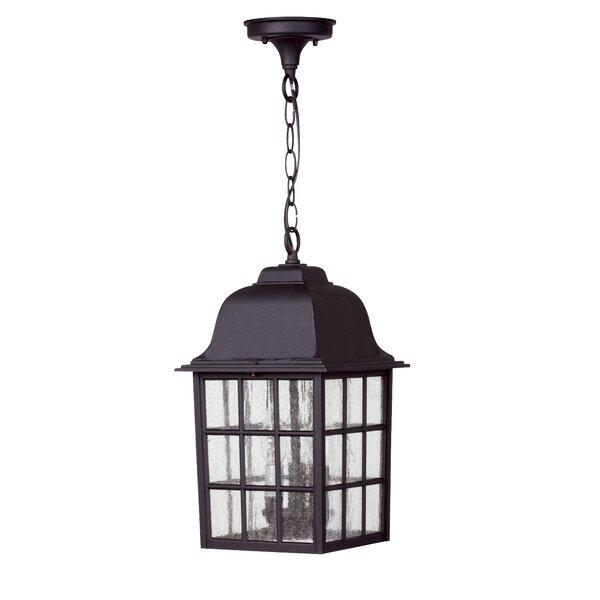 Oakhill 3-Light Outdoor Hanging Lantern by Charlton Home