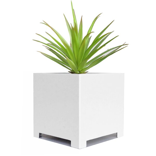 Alora Steel Planter Box by NMN Designs