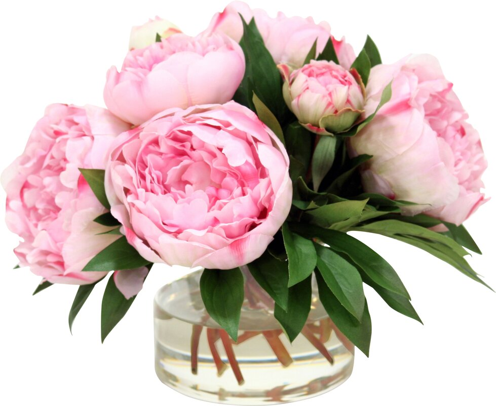 Faux Peonies Amp Buds In Glass Vase Amp Reviews Joss Amp Main