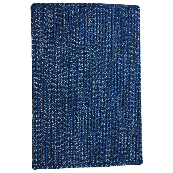 One-of-a-Kind Aukerman Hand-Braided Blue Indoor/Outdoor Area Rug by Isabelline