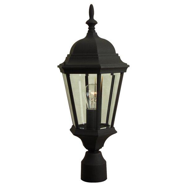 Oakhill 1-Light Outdoor Lantern Head by Charlton Home
