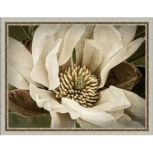 In Bloom 'Classic Magnolia II' Framed Painting Print by Ashton Wall Décor LLC