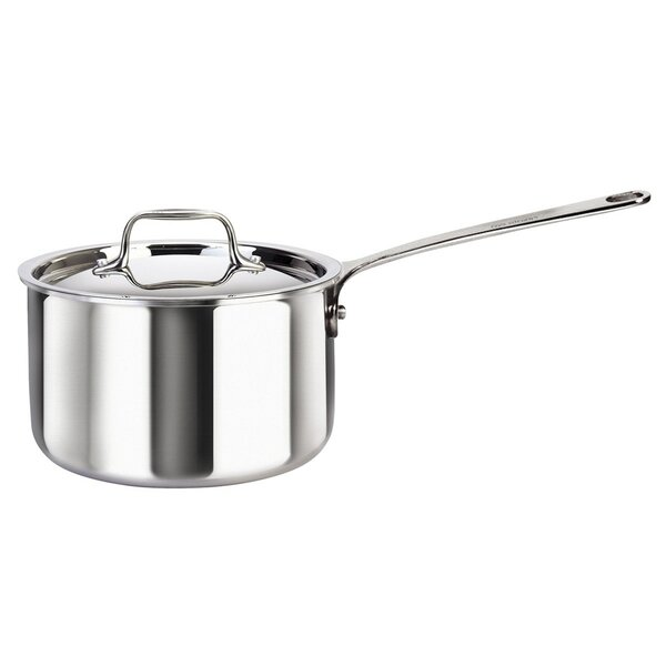 Cool Kitchen 8 qt. Stainless Steel Saucepan with Lid by MyCuisina