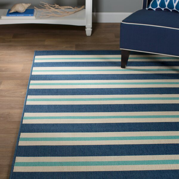 Springwater Blue/Ivory Indoor/Outdoor Area Rug by