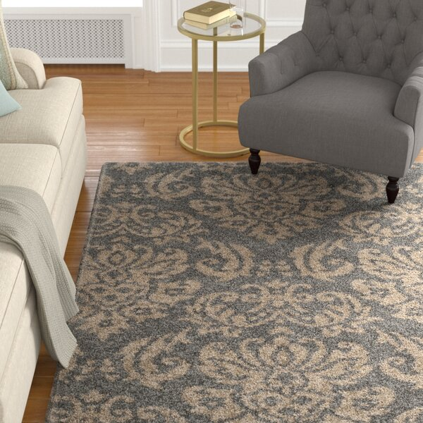 Steephill Gray/Beige Area Rug by Astoria Grand