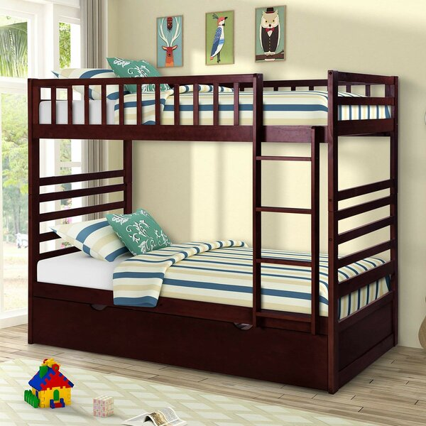 Romeo Twin Over Twin Bunk Bed with Trundle by Harriet Bee