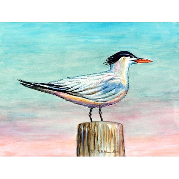 Royal Tern Placemat (Set of 4) by Betsy Drake Interiors