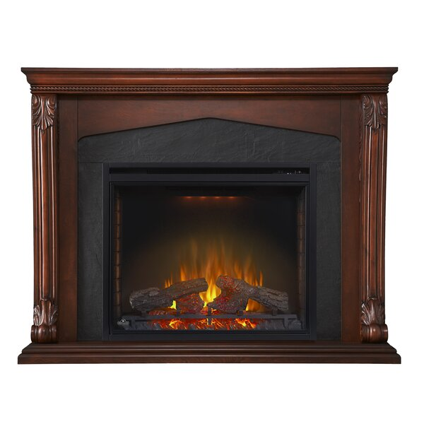 Electric Fireplace by Napoleon