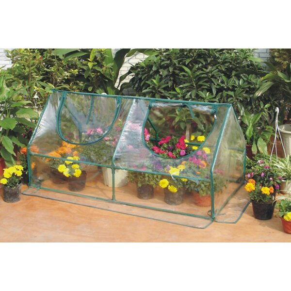 4 Ft. W x 2 Ft. D Mini Greenhouse by Zenport