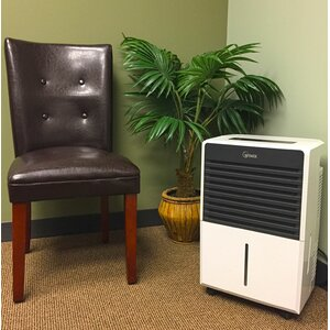 50 Pint Dehumidifier with Casters