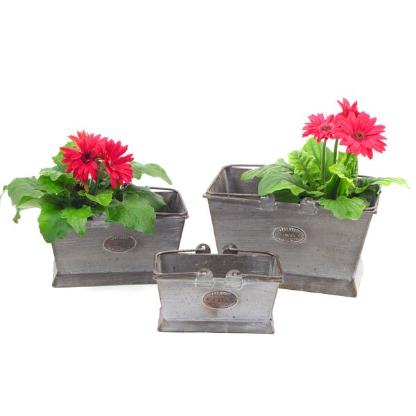 Alaia 3-Piece Iron Planter Box Set by August Grove