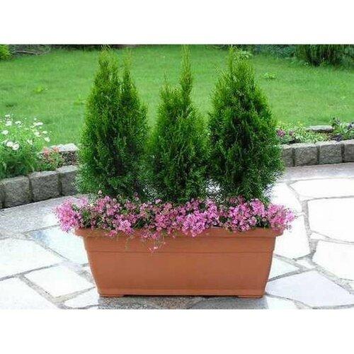 Person Plastic Planter Box Sol 72 Outdoor