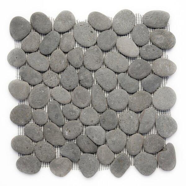 Decorative Random Sized Natural Stone Pebble Tile in River Gray by Solistone