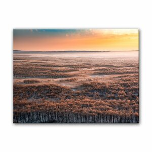 'Dawn' Photographic Print on Canvas by Ready2hangart