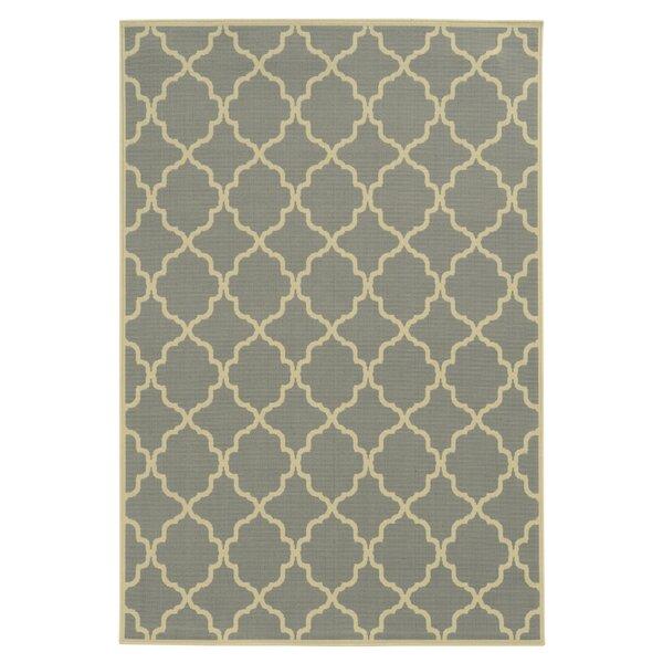 Heidy Geometric Gray/Ivory Indoor/Outdoor Area Rug by Zipcode Design