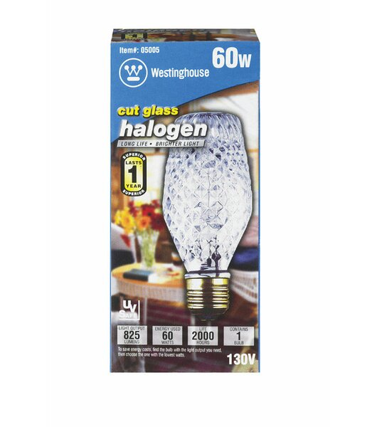60W E26 Dimmable Halogen Edison Specialty Light Bulb by Westinghouse Lighting