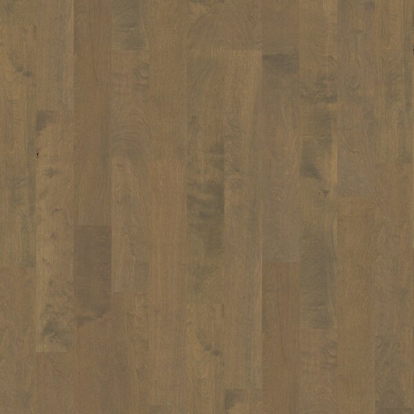 Pittman 5 Engineered Birch Hardwood Flooring in Madras by Shaw Floors