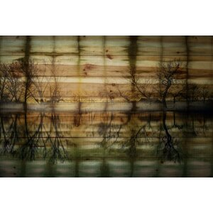 'Calming Reflection' by Parvez Taj Painting Print on Natural Pine Wood by Union Rustic