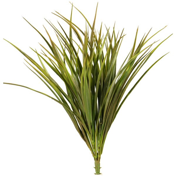 Two Tone Agave Grass (Set of 3) by Highland Dunes