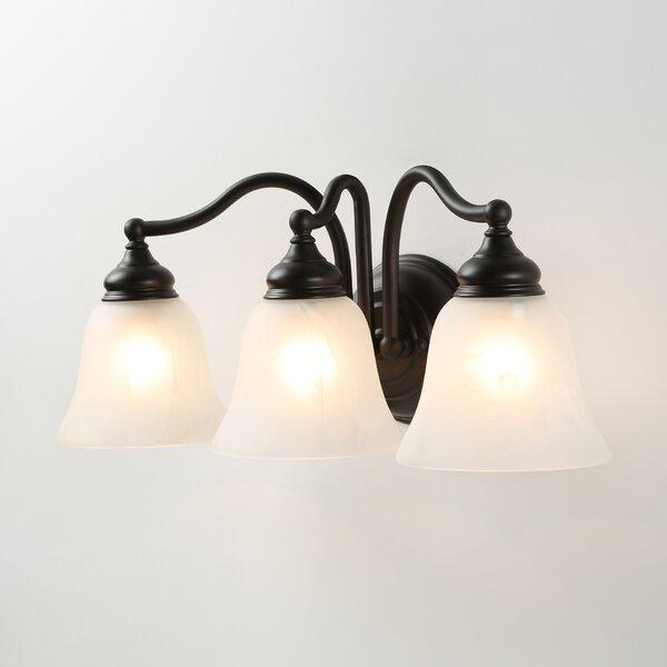Proctorville 3-Light Vanity Light by Alcott Hill