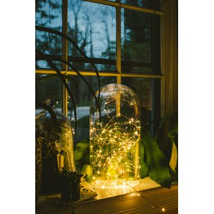 Read Reviews 50-Light 16.5 ft. Fairy String Lights By Hometown Evolution, Inc.