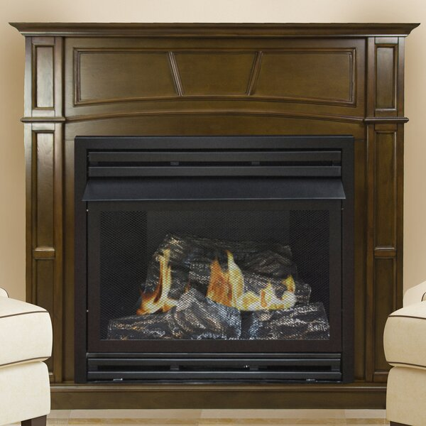 Shawnta Vent Free Fireplace By Darby Home Co