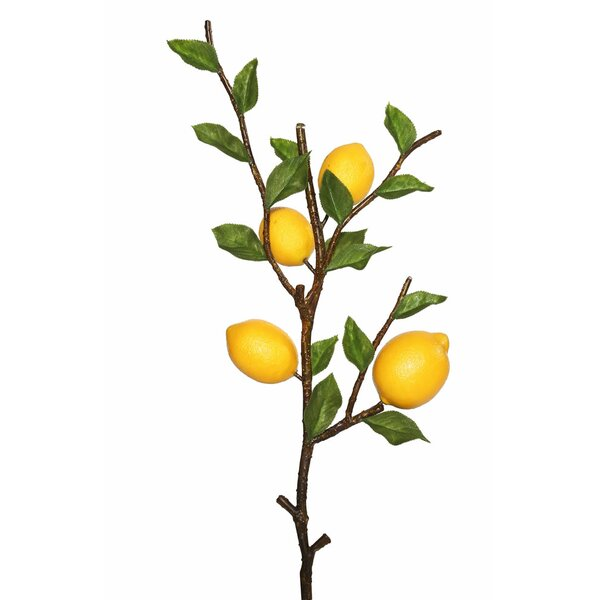Artificial Lemon Foliage Tree by August Grove