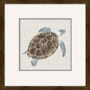 Sea Turtle I by Naomi Mccavitt Framed Painting Print by Star Creations