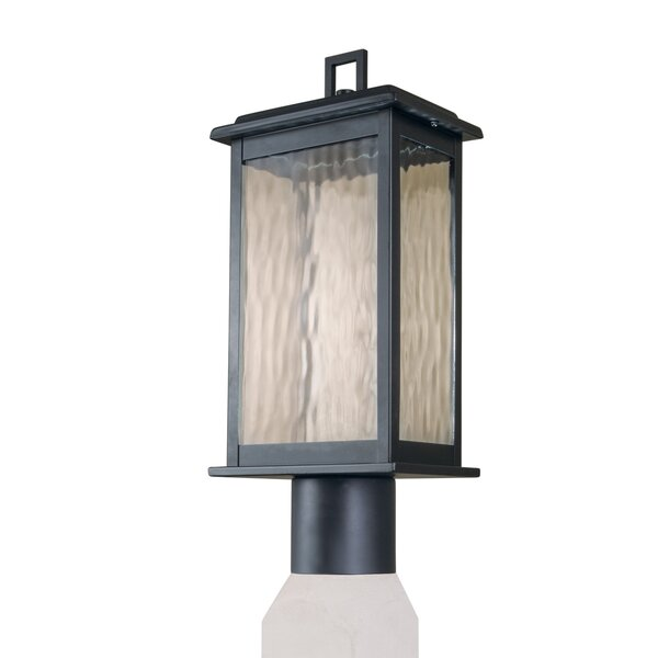 Tayler Outdoor 1-Light LED Lantern Head by Breakwater Bay