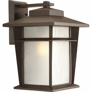 Online Reviews Cathrine Outdoor Wall Lantern By Loon Peak